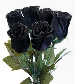 trandafir negru